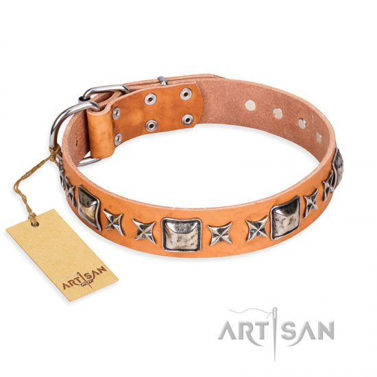 """Glamour Finery"" FDT Artisan Female Central Asian Shepherd collar of natural leather with stylish old-looking circles"
