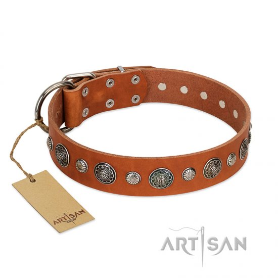 """Natural Beauty"" FDT Artisan Tan Leather Central Asian Shepherd Collar with Shining Silver-like Studs"